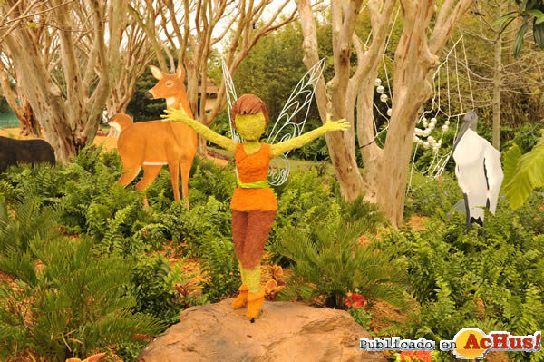 Foto de la noticia /public/fotos2/2009-Epcot-International-Flower-Garden-Festival-01.jpg