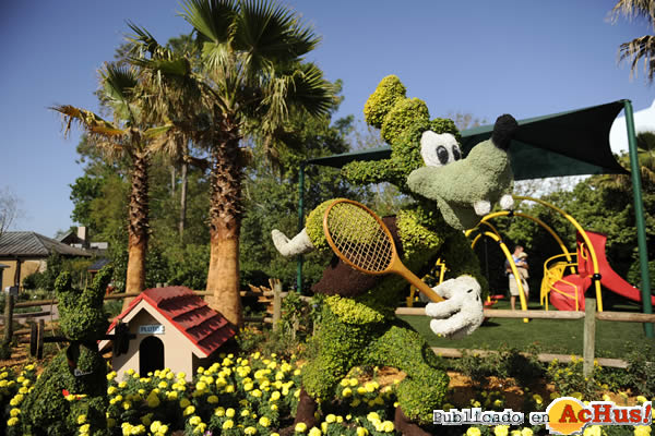 Foto de la noticia /public/fotos2/2009-Epcot-International-Flower-Garden-Festival-05.jpg