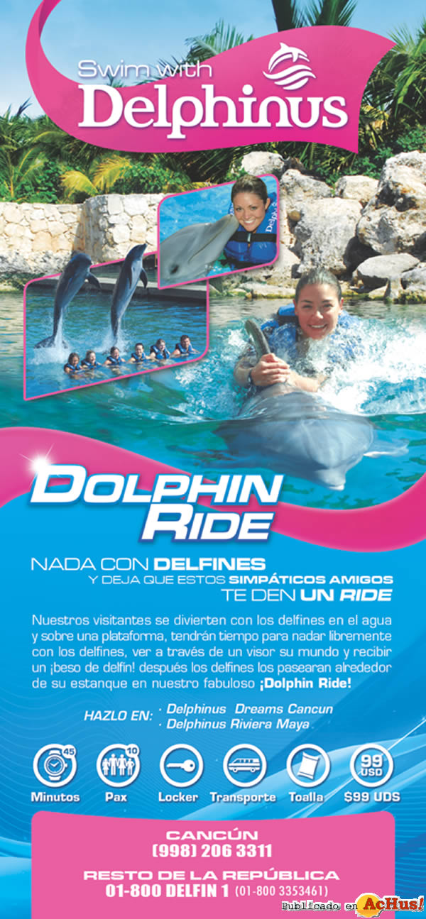 Foto de la noticia /public/fotos2/Dolphin-Ride-2.jpg