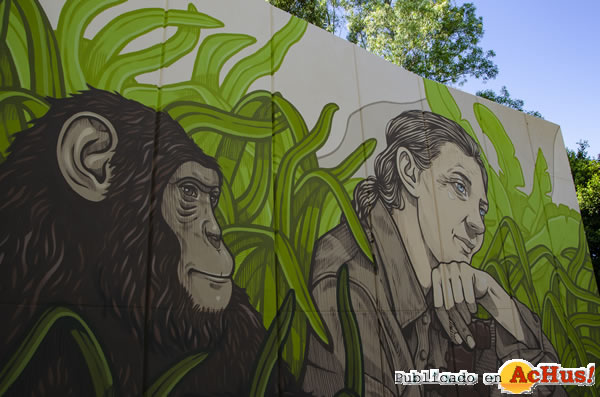 Foto de la noticia /public/fotos3/Mural-Jane-Goodall-16102020.jpg
